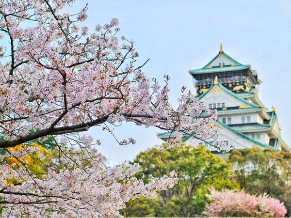 Melirik Pesona Wisata Gunung Fujiyama